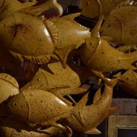 O- Banc de poissons